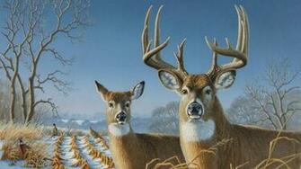 deer Wallpaper Background 3126