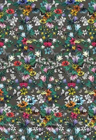 buy wallpaper Osborne and Little TULIPAN Pasha online shop Germany