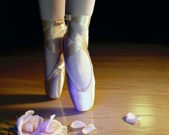 How to Ballet Dance Step by Step Tutorial MegaPics