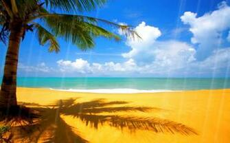 Download Summer Beach Animated Wallpaper DesktopAnimatedcom