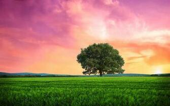 Landscape   Wallpaper High Definition High Quality Widescreen
