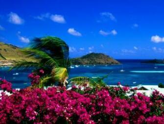 Landscapes Beach Wallpaper 2560x1920 Landscapes Beach Flowers Palm