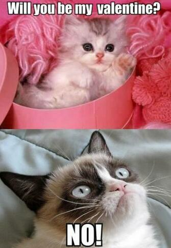 Cute Kitten to Grumpy Cat Will You Be My Valentine 5 out of 5 based