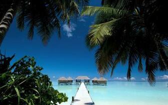 tropical paradise maldives beach house palms 4288x2848 wallpaper High