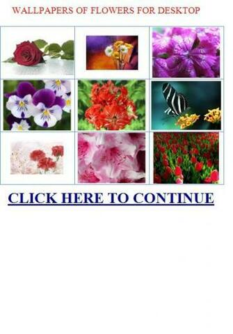 WALLPAPERS OF FLOWERS FOR DESKTOP   EXOTIC FLOWERS NAMES