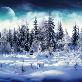 iPad Wallpapers Download 2012 Christmas Winter Wallpapers for