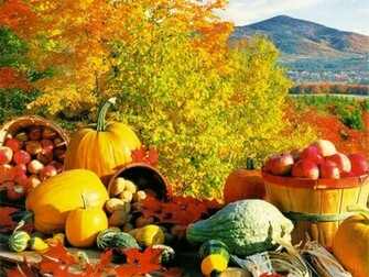 you enjoy this Fall Harvest wallpaper download from our Autumn