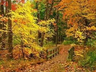Autumn images Beautiful Fall Wallpapers wallpaper photos 15496213