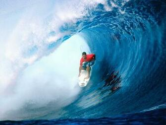 wallpaper animal hd Wallpapers Hd Surf Girls