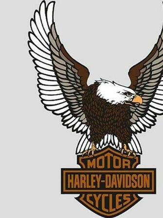 of harley davidson wallpaper border on sale Great selaction of Harley