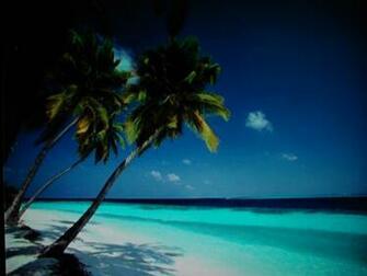 Caribbean Beach Wallpaper Desktop Backgrounds for HD Wallpaper