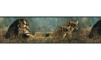 Home Animal Borders Wild Cats Animals Wallpaper Border B76462