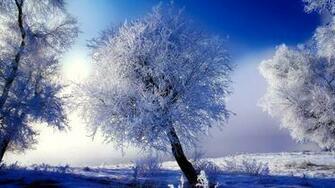 Winter Scene Wallpaper 6537 Wallpapers13com
