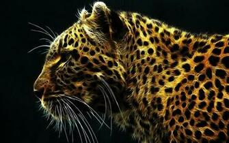 Cool Neon Animal Backgrounds Light bright leopard