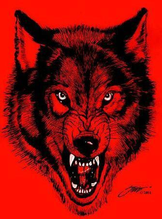 NWO Wolf Pack logo