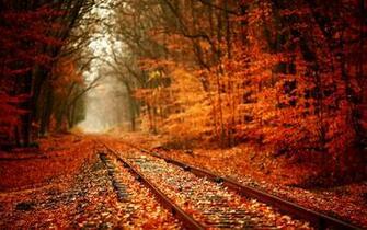 Fall Wallpaper   Autumn 4k 128160   HD Wallpaper Download
