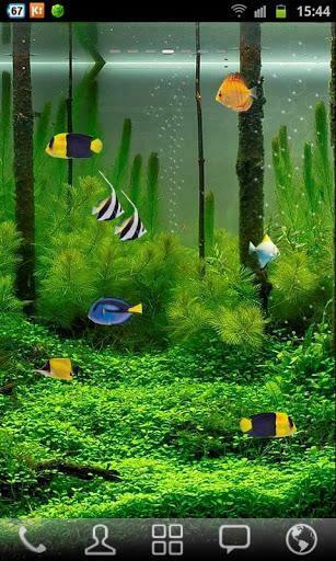 Aquarium Live Wallpaper for android Aquarium Live Wallpaper