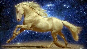 desktop horse and make this HD wallpapers desktop horse for